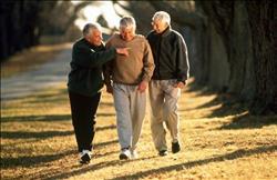 المشي في المتنزهات أفضل من المشي بالشوارع؟