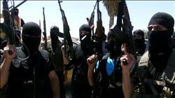 """مقتل 17 عنصرًا من """"داعش"""" في الموصل بالعراق"""