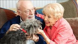 الحيوانات الأليفة تحمي كبار السن من أمراض القلب