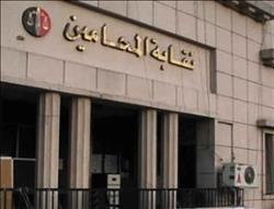 «محاميي المحلة» تؤيد قرارات النقابة العامة بتنقية الجداول