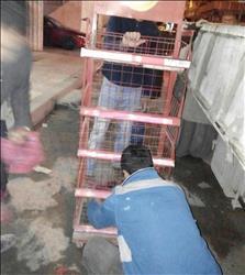 إزالة الإشغالات ومطاردة نباشي القمامة والفريزة شرقي الإسكندرية