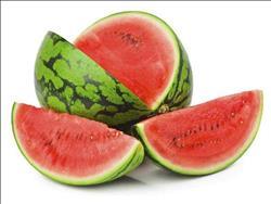 ننشر توصيات الزراعة لمزارعي البطيخ والكنتالوب خلال شهر فبراير
