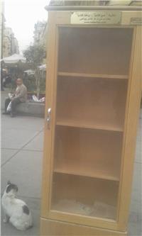 لقطة اليوم.. سرقة مكتبة الشارع «المجانية» بوسط القاهرة