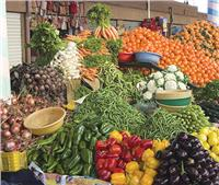 ضخ 30 طن من الخضروات في أسواق مدينة العريش