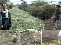 «قرى الصف» تغرق في الصرف الصحي .. والأهالي: «محدش سمعنا» |صور