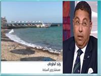 وليد البطوطي: «eygpy to day» أثبتت عدم وجود أي عقبة بين مصر وإيطاليا