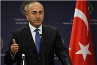 وزير الخارجية التركي يرجح انتهاء «غصن الزيتون» في مايو المقبل