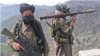 «التفاوض من أجل السلام».. هل تتخلى طالبان عن الفكر الجهادي؟