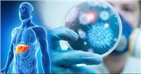 """عقار جديد لعلاج فيروس التهاب الكبد الوبائي """"سي"""" بأنواعه الستة"""