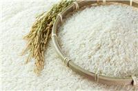 رئيس شعبة الأرز يكشف حقيقة زيادة السعر