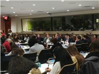وفد مصر بالأمم المتحدة يعقد لقاءً حول تمكين المرأة الريفية