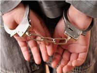 حبس 14 متهما بسبب معاكسة فتاة بالمطرية