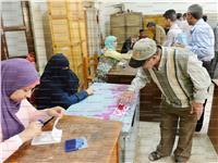 مصر تنتخب| أهالي أسيوط تركوا حقولهم وتوجهوا للإدلاء بأصواتهم