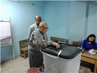 مصر تنتخب| إقبال متوسط بلجان مصر الجديدة في الفترة المسائية