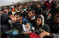 ارتفاع عدد شهداء «يوم الأرض» إلى 7 أشخاص وإصابة 550
