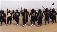 مقتل 10 من تنظيم «داعش» بينهم قيادي خلال عملية أمنية بالأنبار