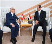 السيسي: مصر حريصة على الاضطلاع بمسئولياتها تجاه الوطن العربي