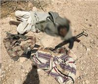 الجيش الثالث يقضي على أمير التنظيم الإرهابي بوسط سيناء