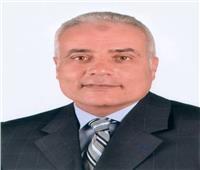 «دربالة» يفوز بمنصب نائب رئيس نقابة الصحافة والطباعة والإعلام