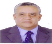 «حنفي علي جبالي» رئيسًا للمحكمة الدستورية العليا