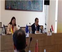 بالإجماع.. تجديد عضوية مصر كمراقب في «منظمة البحر الأسود»