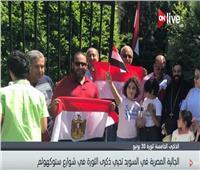 فيديو| الجالية المصرية في ستوكهولم يحيون ذكرى ثورة 30 يونيو