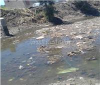 فيديو وصور.. الجفاف يضرب ترعة «السخاوي» بكفرالشيخ.. والمواطنون يستنجدون بـ«الري»