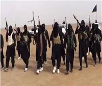 «الإفتاء» تحذر من مخاطر تزايد اغتيال «القاعدة» للدبلوماسيين
