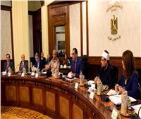 الحكومة توافق على إنشاء كلية علوم الثروة السمكية وجامعتي مطروح والوادي الجديد