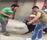 التحقيق مع «سيكا» صاحب فيديو «الكلب» عبر السوشيال