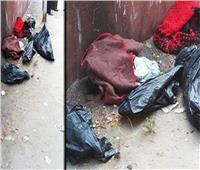 فيديو| ننشر الاعترافات الكاملة للمتهمين في حادث «أطفال المريوطية»