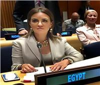 مصر تلقي بيان أكبر تحالف للدول النامية في الأمم المتحدة
