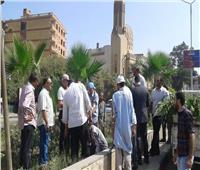 حمله لزراعة 1000 شجرة مثمرة بحي شمال الجيزة