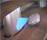 شاهد| «صراصير وثعابين» للكشف عن أعطال محركات الطائرات