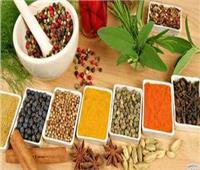 «الطب التقليدي الهندي» في جامعة عين شمس
