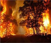 اليونان تعلن الطوارئ لمواجهة حرائق الغابات