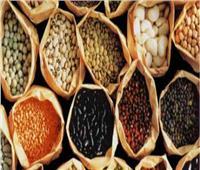 «غرفة صناعة الحبوب» تعلن توفير المكرونة للتموين بأسعار مناسبة