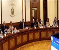 الوزراء يوافق على إجراء تأميني ضد مخاطر تقلبات أسعار البترول