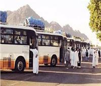 السياحة: إنهاء أزمة تأشيرات سائقي حافلات نقل حجاج البري