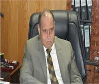 «شمال القاهرة»: 2.1 مليار جنيه حجم متأخرات الحكومة للكهرباء