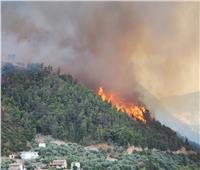 اليونان تبدأ في دفن قتلى حرائق الغابات وسط انتقادات حادة للحكومة