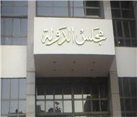 الإدارية العليا: مصر لها الولاية الكاملة في تقرير سياستها الشاملة في سيناء
