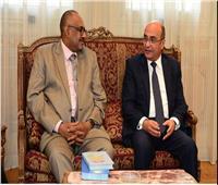عمر مروان يصطحب وفدا سودانيا رفيع المستوى غدا لزيارة العاصمة الإدارية