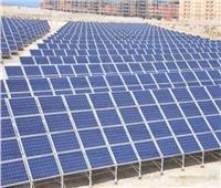 إنشاء أكبر محطة طاقة شمسية في جنوب سيناء بقدرة 5 ميجاوات