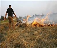 البيئة: نتصدى لأزمة حرق قش الأرز بـ19 مشروعا لتدوير المخلفات