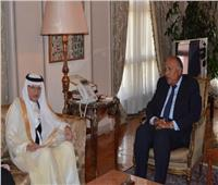 وزير الخارجية يستقبل أمين عام منظمة التعاون الإسلامي