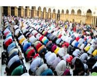 محافظة الجيزة: تخصيص 476 ساحة لصلاة عيد الأضحى