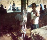 «الفراشيح والصيادية».. أشهر أكلات بدو سيناء خلال العيد
