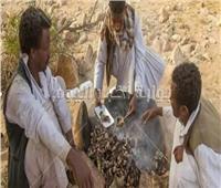الكبدة والفتة والكاشيد.. أشهر أكلات العيد في أسوان