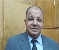 رئيس جمعية منتجي الأقطان يطلب زيادة القيمة المضافة على «الخام»